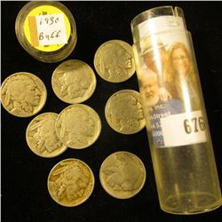 Plastic tube with (8) 1930 P Buffalo Nickels, various grades.