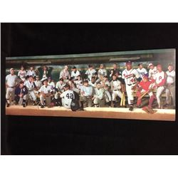 "BASEBALL GREATS 30"" X 12"" PORTRAIT"