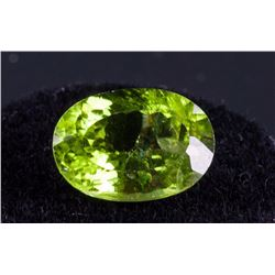 5ct Genuine Large Oval Peridot RV$200