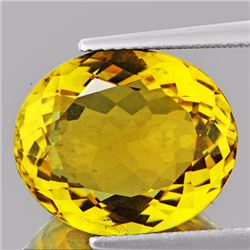 Natural AAA Golden Yellow Citrine 11.94 Ct - FL