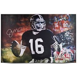 "Joe Montana Signed LE 49ers ""Joe Cool"" 24"" x 36"" Print (UDA COA)"