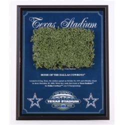 Dallas Cowboys Texas Stadium Final Season 8x10 Plaque with Game-Used Turf (Steiner COA)
