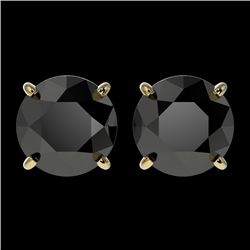 2.60 CTW Fancy Black VS Diamond Solitaire Stud Earrings 10K Yellow Gold - REF-64R2K - 36685