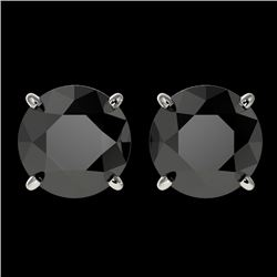 3.18 CTW Fancy Black VS Diamond Solitaire Stud Earrings 10K White Gold - REF-80Y9N - 36697