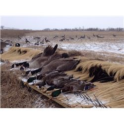 1-DAY YOUTH OR ADULT NEBRASKA WATERFOWL HUNT