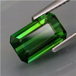Natural Bluish Green Tourmaline 2.71 Cts