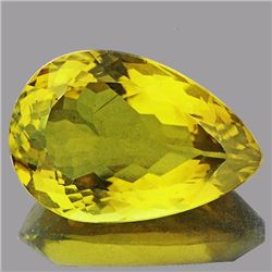 Natural Whisky Golden Yellow Citrine 13.58 Ct - FL