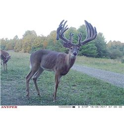 3 Day Whitetail Deer hunt for 2 hunters (1x1) in Central Ohio. September 16 - December 20, 2019. Ext