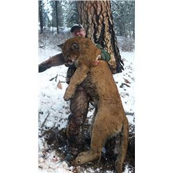MOUNTAIN LION HUNT FOR ONE (1) HUNTER IN IDAHO