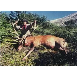 ARGENTINA 5 DAY RED STAG HUNT