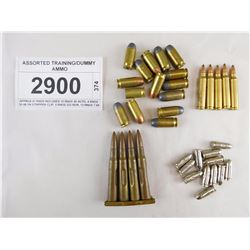ASSORTED TRAINING/DUMMY AMMO