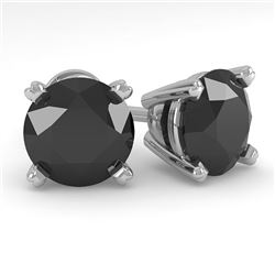 3.0 CTW Black Diamond Stud Designer Earrings 14K White Gold - REF-82M9F - 38383