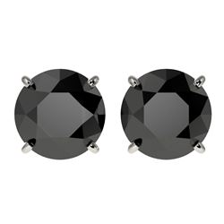 3.70 CTW Fancy Black VS Diamond Solitaire Stud Earrings 10K White Gold - REF-74M5F - 36703