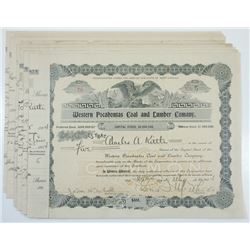 Western Pocahontas Coal and Lumber Co., 1904-1905 Group of Cancelled Stock Certificates