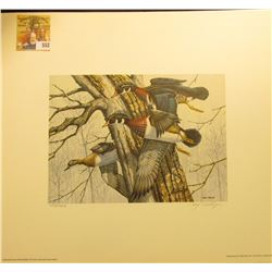 1992 Montana Wood Duck Print, No. 2575 pf 9212 Prints hand autographed by Craig Philllips, measures