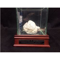 "YANKEE STADIUM ARTIFACT (PIECE OF ""THE BLACK"" TAKEN FROM THE CENTERFIELD BLEACHERS) STEINER COA"