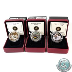 Lot of 3x Canada $10 Ducks of Canada Fine Silver Coins - 2013 Mallard, 2013 Wood Duck & 2014 Pintail