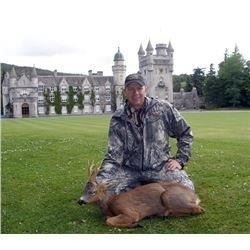 7 Day Red Stag Hunt in Scottland