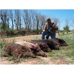 All The Texas Hogs You Can Shoot For 3 Hunters