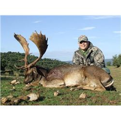 Three day Trophy Fallow Deer Hunt for 1 Hunter