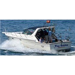 Lake Michigan Salmon and Trout Fishing Charter for 4 Anglers