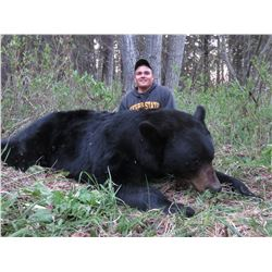 Alberta – 6 Day – Black Bear Hunt for One Person