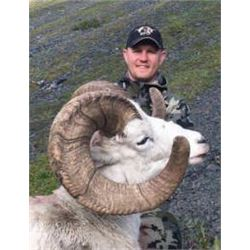 Yukon – 10 Day – Dall sheep, wolf, wolverine and Black Bear Hunt for One Hunter