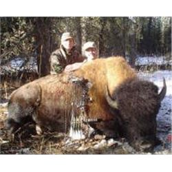 British Columbia – 10 Day- Hunter's Choice - Bison, Elk, or Mt. Goat Hunt One