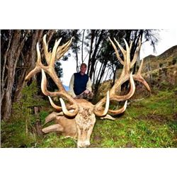 New Zealand – 4 Day – Red Stag Hunt for Two Hunters