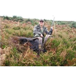 *Ireland – 3 Day/4Nights – Ibex Hunt for One Hunter