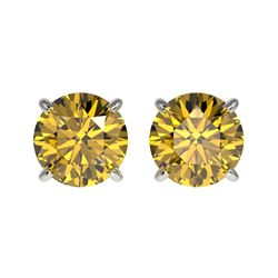 1.50 CTW Certified Intense Yellow SI Diamond Solitaire Stud Earrings 10K White Gold - REF-192V2Y - 3