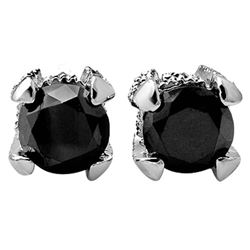 2.0 CTW VS Certified Black & White Diamond Solitaire Stud Earrings 18K White Gold - REF-76K4W - 1185