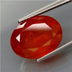 Natural BIG  Spessartite Garnet Africa 11.70 Cts