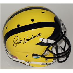 Jim Harbaugh Signed Michigan Wolverines Custom Matte Yellow Full-Size Helmet (JSA COA)