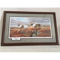 """""""Caribou On The Move"""" Artist Drawing"""