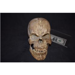 LARGE VAMPIRE CREATURE DEMON SKULL
