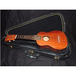 Ukulele with case (Mint Condition!) $150 to $300