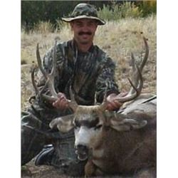 Trophy deer hunt with Sangre de Cristo Outfitter