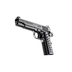 "SIG 1911 45ACP 5"" WE THE PEOPLE"