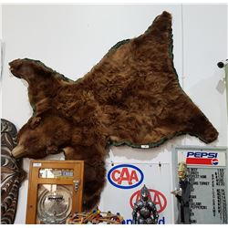 TAXIDERMY BROWN BEAR RUG