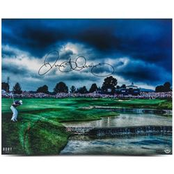 "Rory McIlroy Signed ""Final Approach"" 16x20 Photo (UDA COA)"