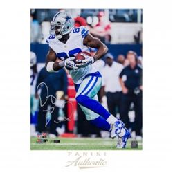 "Dez Bryant Signed LE Cowboys 16x20 ""Completion"" Photo (Panini COA)"