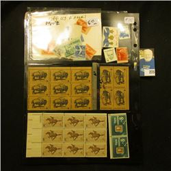Stamps - Misc Lot - 10 different Airmail Stamps-mint, blocks of Buffalos 6 c plate block of 9 Pony E