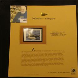 2001 Delaware Migratory Waterfowl $6.00 Stamp depicting an Oldsquaw Duck, Mint, unsigned, in vinyl p