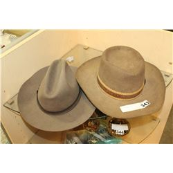 TWO BILTMORE HATS