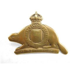 22ND INFANTRY BATTALION CAP BADGE
