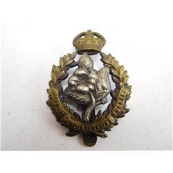 THE QUEEN'S OWN HUSSARS WORCESTERSHIRE CAP BADGE
