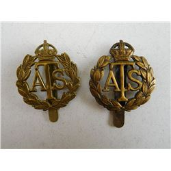 TERRITORIAL SERVICES AUXILLERY CAP BADGES