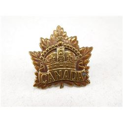 CANADIAN EXPEDITIONARY FORCES CAP BADGE