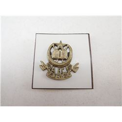 PAKISTAN ARMY CAP BADGE
